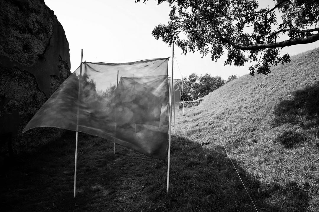 Fort Sabina vs. natuur vs. kunst
